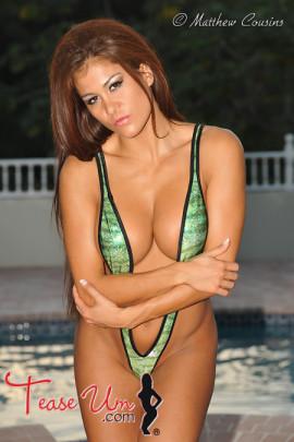 Zara Hawk Busty Beauty By The Pool